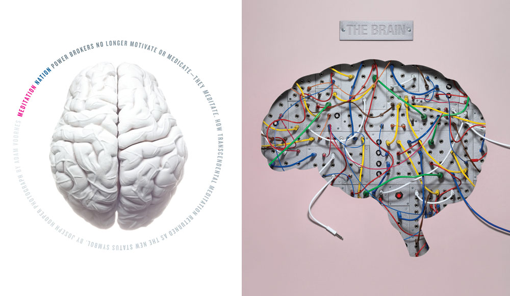 6_brain