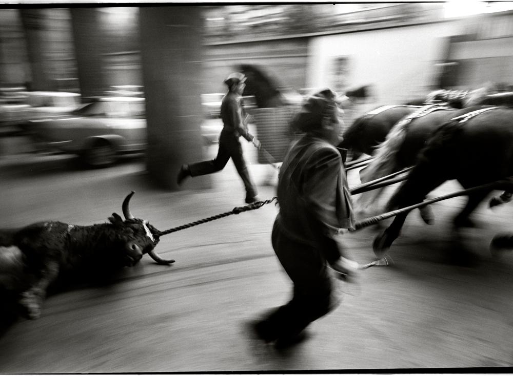 Bullring, Barcelona