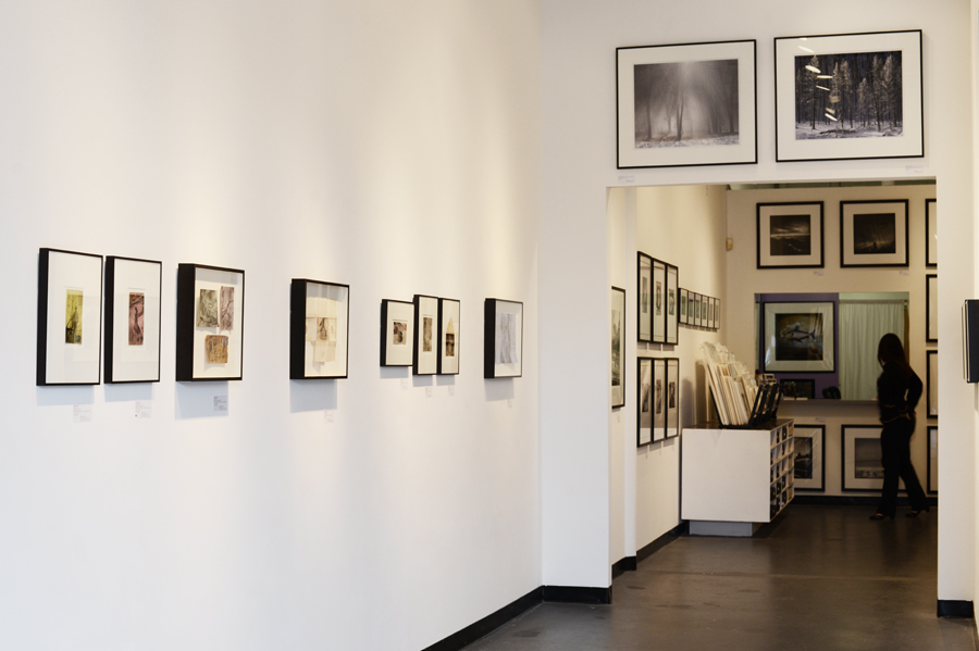 Catherine Couturier Gallery, Houston, Texas. Photograph by Amy V. Cooper