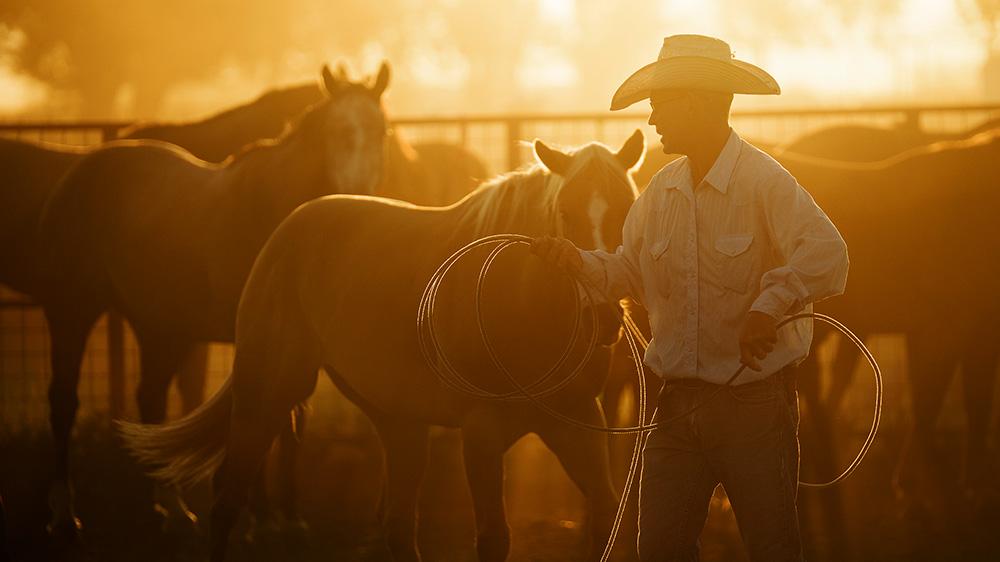 Saddling Horses at Kokernot 06 Ranch, Alpine, Texas